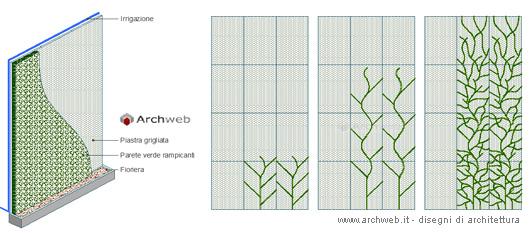 Fiori 3d Archweb.Parete Verde Con Rampicanti