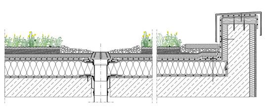 Garden roof dwg detail for Sezione tetto giardino