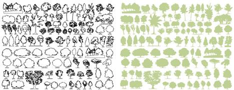 Abaco degli alberi dwg for Nomi di arbusti e cespugli