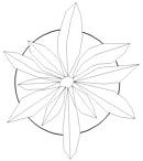 Miscelatori arredi per interni dwg fiori for Arredi 3d dwg