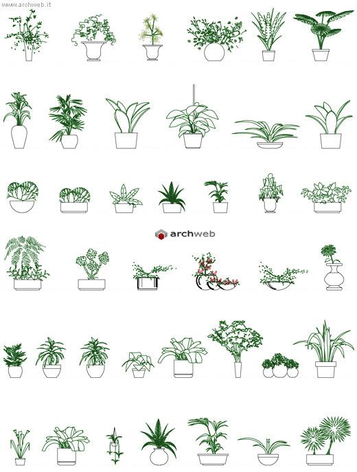Piante per interni e in vaso disegni dwg for Arredo giardino dwg