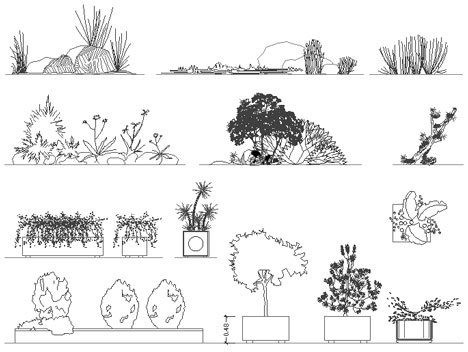 Disegni di fioriere e aiuole, vasi con fiori, arbusti e piante grasse ...