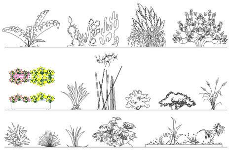 Fioriere e aiuole disegni fioriere dwg 2 for Disegnare giardini